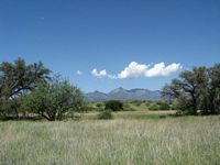 View of the Santa Rita Mountains